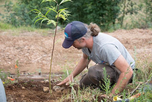 Joe Planting at Protea Gardens of Maui